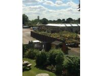 GARDEN CENTRE SHOP- SALES ASSISTANT- SATURDAYS (OCASSIONAL SUNDAYS AND OTHER DAYS) - LICHFIELD