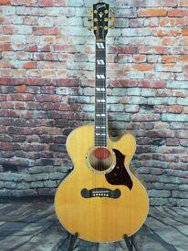 Gibson EC30 Blues King