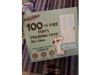 100 plus 5 puppy pads,