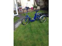 Di Blasi R32 Folding Tricycle