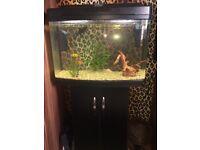 Fish tank (68 Litre)