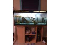 Good quality fish/ turtle tank for sale