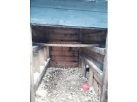 Large hen ark for sale