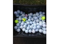 GOLF BALLS, PREMIUM BRANDS,TITELIST, CALLOWAY, ETC. MINT CONDITION AT A FRACTION OF NEW, BEST PRICES