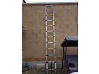 Extended ladder