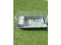 Indoor rabbit cage and accessories