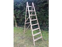 Vintage Wooden Step Ladder 6 Rung Wedding Display