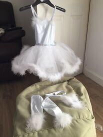 Snow Angel professional dance costume