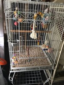 Bird /parrot cages
