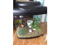 Fish tank with pump etc