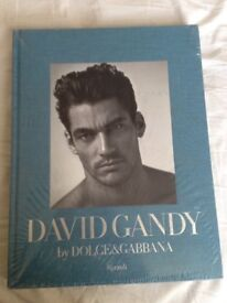 David Gandy Dolce and Gabbana Photo foci of the model. Rizzoli publication. Collectible. Sealed New