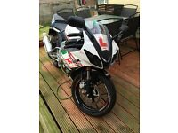 Rieju RS3 125 LC ProRacing Castrol Edition