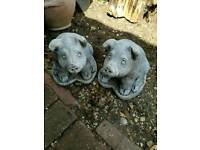 Two garden pigs