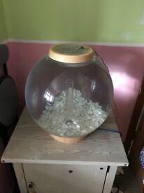 Bio orb no pump