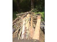 Free timber battens/ firewood