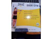 Everlast Pilates Door Gym Resistance Bands BNIB