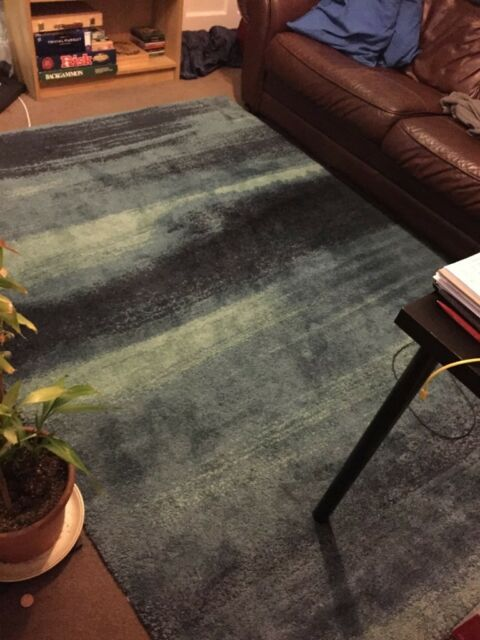 Ikea Sonderod Blue Rug Great Condition