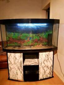 4ft juwel bow fronted fish tank and Stand For Sale full set up