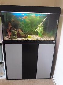 Fluval 125 fish tank with cabinet and extras