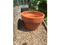 Terracotta Garden pot. For a shrub or plant assortment. Excellent condition.