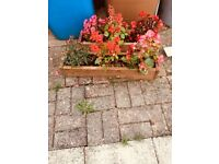 2 large wooden planter