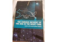 The Curious Incident of the Dog in the Night-time --the play by Simon Stephens