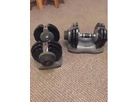 Adjustable dumbbells/ weights