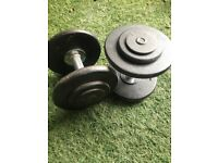 Cast iron 15kg pair of dumbells