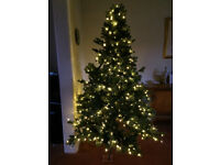 6ft 6in QUALITY LED PRELIT FROSTED HINGED COLORADO SPRUCE FEEL REAL ARTIFICIAL CHRISTMAS TREE