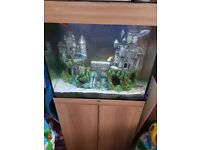 Jewel lido 120 fish tank amd cabinet oak