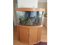 JUWEL TRIGON CORNER FISH TANK AND STAND FOR SALE,FULL SET UP