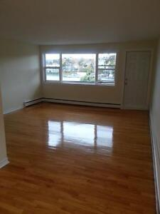BEAUTIFUL COMPLETELY RENOVATED 1 BDRM ON QUINPOOL ROAD JULY 1ST