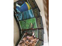 Illustrated wildlife encyclopedias