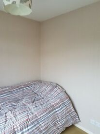 Single room to let