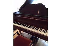 Beautiful baby grand piano - hemingway