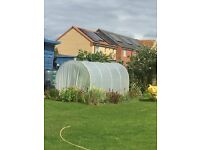 Poly Tunnel 2 metres x 4 metres, good condition, ideal for families