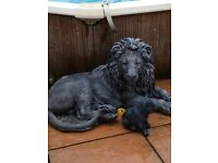 Huge life size garden lion