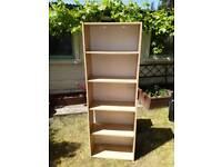 Tall bookshelves