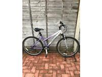 Giant Rock Mountain bike in like new condition