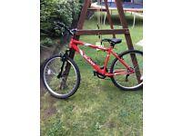 Men's Apollo Slant Bicycle