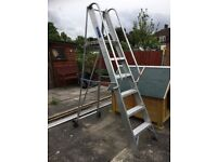 Step Ladder with handrails