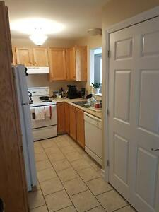 Aug. 1st, Huge 2 Bed, 2 Bath Downtown with Heat Pump!