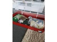 Large rabbit / guinea pig cage