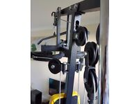 Everlast 1100 multi gym for legs and arms. Excellent condition. Max user weight 110kg.