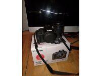 Canon eos 100d, 18-55 lens.