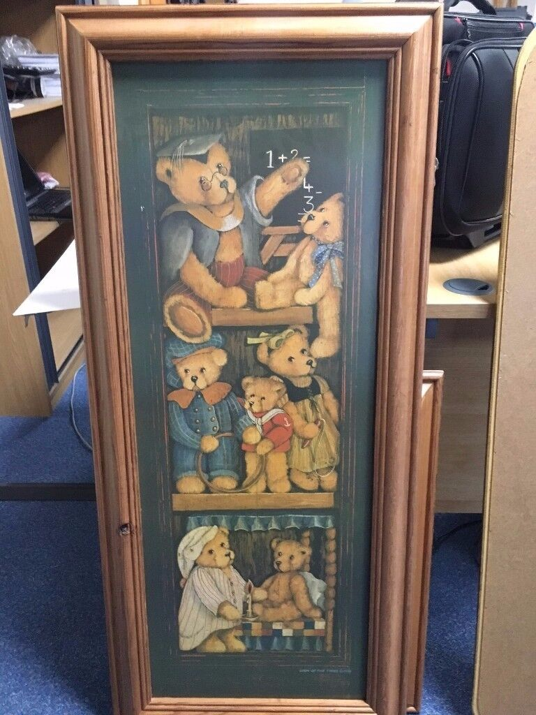 Teddy Bear Pine framed pictures
