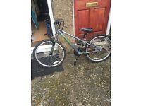 Switch bike for sale