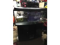 4ft bow front tank for sale.