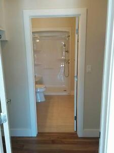 2 Bedroom apartment close to Bally Haly! St. John's Newfoundland image 9