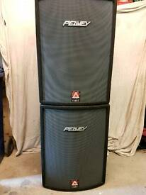 PEAVEY 118 XT (Pair) Great Condition